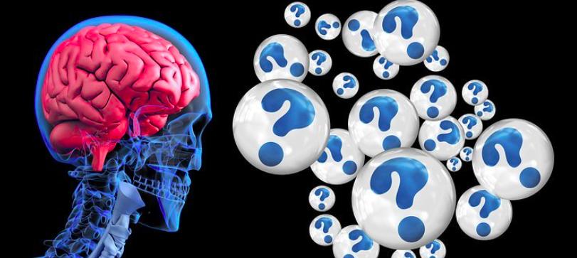 Neuropedagogía del dolor